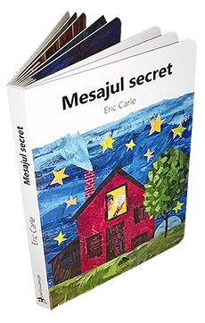 Mesajul secret - coperta